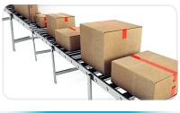 Camie Boxes Conveyor Belt